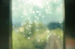 Summer Rain (Sugar Crisp) Tags: contax aria 35mm film analogue 2016 august summer reverie window waterdrop
