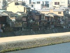 Pontocho ochaya and bars from Kamogawa (Lau_chan) Tags: kyoto maiko geiko geisha pontocho ochaya hanamachi