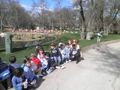 orvalle (8)