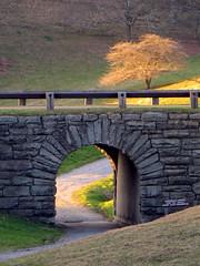 Sunset Walk (BlueRidgeKitties) Tags: bridge sunset tree northcarolina tunnel trail blueridgeparkway westernnorthcarolina southernappalachians ccbyncsa moseshconememorialpark canonpowershotsx10is