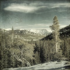 vantage point (jssteak) Tags: trees snow mountains forest canon square colorado shadows peaks overlook textured rockymountainnationalpark bristleconepine millslaketrail texturesquared t1i