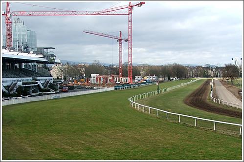 Arbeitseinsatz Greyhound - Rennbahn Hippodrom Frankfurt/M. - Niederrad