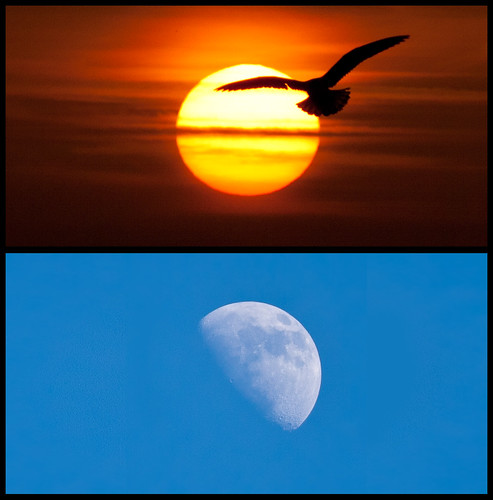 Sun and moon diptych. by Ianmoran1970