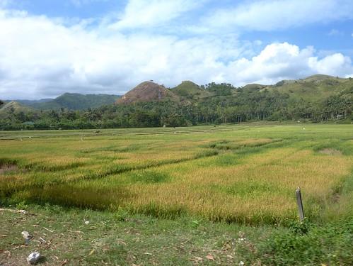 Panay-Boracay-Roxas (10)