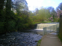 Weir on Water of Leith Walkway Edinburgh