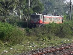 Wanderers of MGS yard (Smeet Chowdhury) Tags: ir nr ldh irfca 23015 wag5