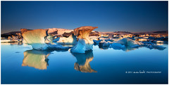 Golden Ice (Dylan Toh) Tags: mountain lake reflection bird ice berg sunrise landscape photography dawn iceland gull lagoon iceberg dee jokulsarlon vatnajokull waterscape icecap everlook