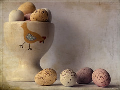 Happy Easter (sherone72) Tags: uk england stilllife texture chicken easter lumix cafe colours chocolate pastel egg cadbury chick panasonic textures silence tuesday g1 oldham hen tabletop minieggs eggcup greatphotographers texturized sweettreat stilllifeart memoriesbook dmcg1 kiimklassen