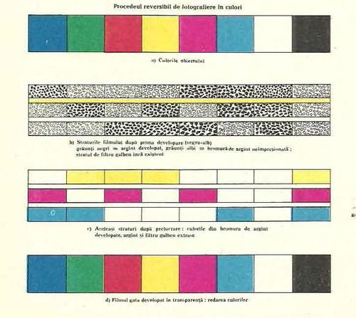 foto in culori