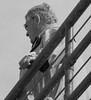 Santa Monica Pier 311 (dadsla68_3) Tags: santamonicapier daddies abuelos papis chubbies oldermen maturemen silverdaddies hombresmaduros hombreviejos