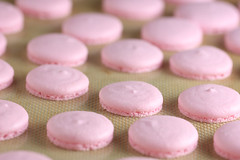 strawberry-macarons-4
