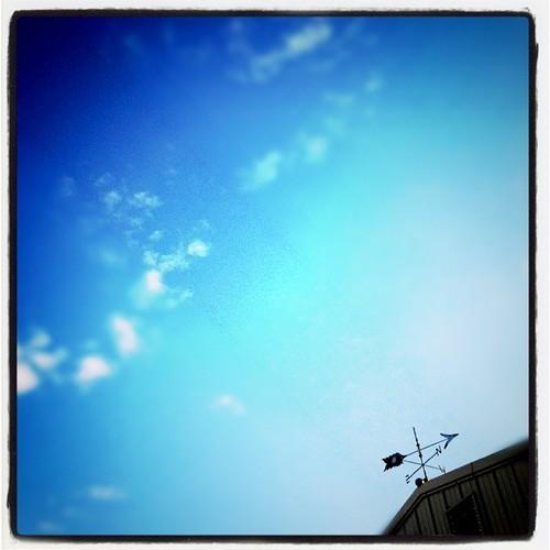 . blue skies .