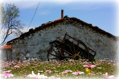 fairy tale! (philos from Athens) Tags: flowers sky beauty wagon greece cart picnik