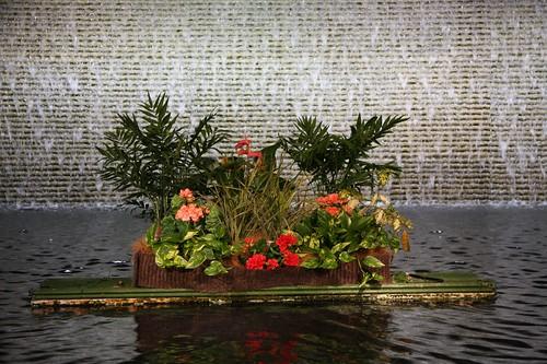 浮かぶ花たち / Flower arrangement
