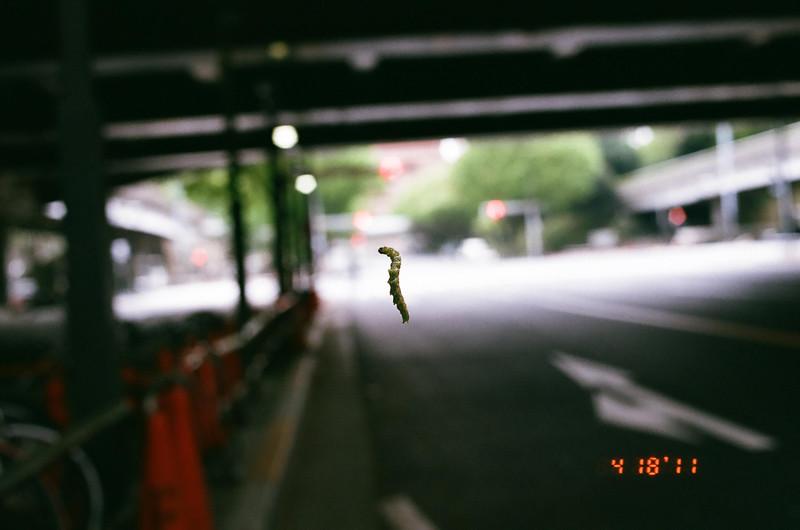 caterpillar_27