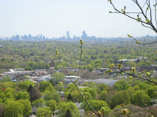 cityscape from Prospect Hill