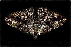 ... IMG_3604/b (*melkor*) Tags: light stilllife black art colors altered dark geotagged dead darkness moth experiment minimal conceptual deadmoth obscurity melkor trashbit thealteredone abeautifuldeadii amothslastflightproject