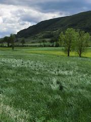 IMG_1039 (superpagliaccio) Tags: verde nuvole fiori sentiero zaino e1 paesaggi montagna percorsi umbria colline vento appennini prati cammino boschi movimentolento