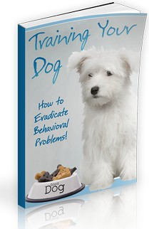 How to train your dog ebook, dog training