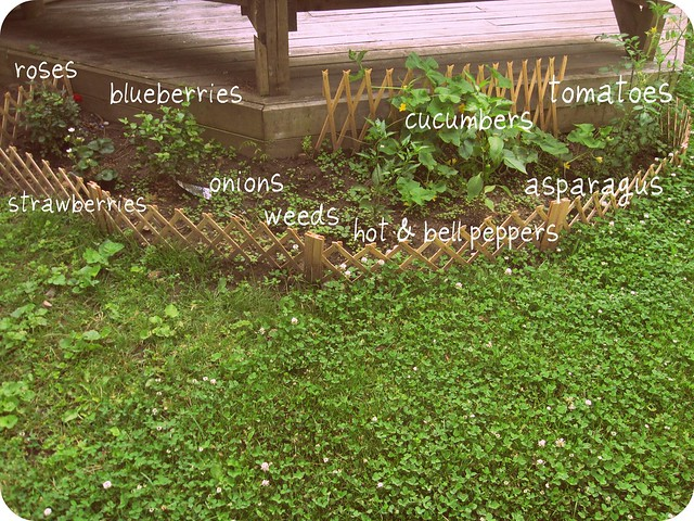 little garden v. 2.0 imadeitso.com