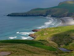 Pipikaretu Beach, Otago Peninsula, New Zealand (Yvon from Ottawa) Tags: newzealand beach penguin head otago peninsula yelloweyed taiaroa pipikaretu
