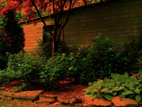 SECRET COTTAGE WITH GARDENS -   (red maple branch)## PLEASE see in large size