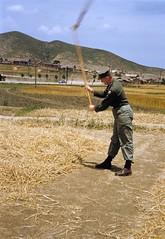 Photographer giving it a try, 1952 (m20wc51) Tags: war korea korean busan pusan 1952