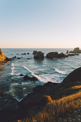 147A0546.jpg (Hreilly) Tags: oregon coast pacific north west pnw sunset ecola state park roadtrip canon 5d mark 3 reillyhunter landscape vsco friends portraits nature outdoors wilderness ocean cliffside sunrise