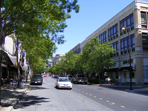 Elm Street Looking East