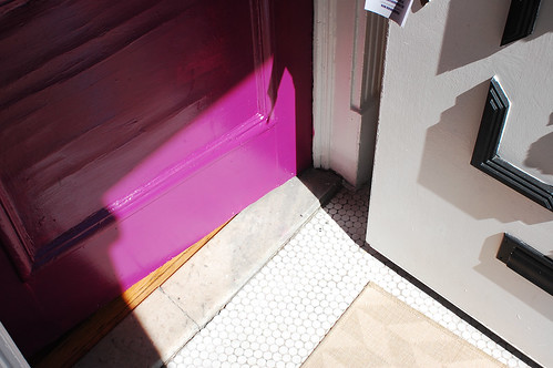 nikon - magenta jewel door 2-0449