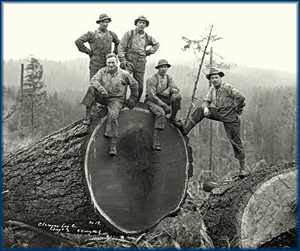 Old timey (blood sugar?) loggers.