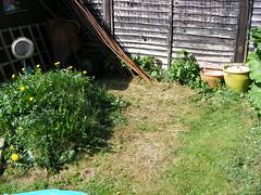 Garden 05 April