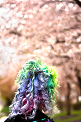 Day 134 of 365 - Year 2 (wisely-chosen) Tags: selfportrait me bokeh april cherryblossoms canon50mmf18 pinkhair bluehair greenhair cameraraw 2011 lavenderhair naturallycurlyhair manicpanicredpassion manicpanicultraviolet manicpanicshockingblue manicpanicelectricbanana curlformers adobephotoshopcs5extended herbalessencestouslemesoftlyconditioner itsa10miraclehairmask