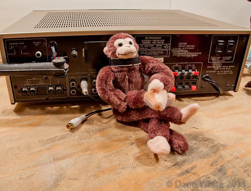 Project Loud Monkey 073