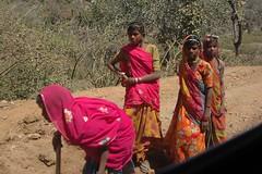 Day Laborers (becklectic) Tags: woman india color catchycolors women catchycolor rajasthan ranakpur 2011 hindustan views100 worldtrekker drivetoranakpur 20110316dsc0759a