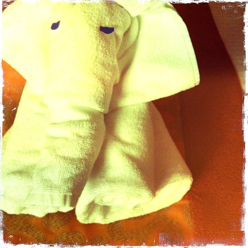 towel folded elephant