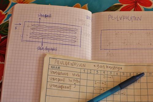 Strakke planning