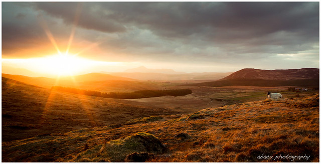 Sunset over Partry Mountains, County Mayo
