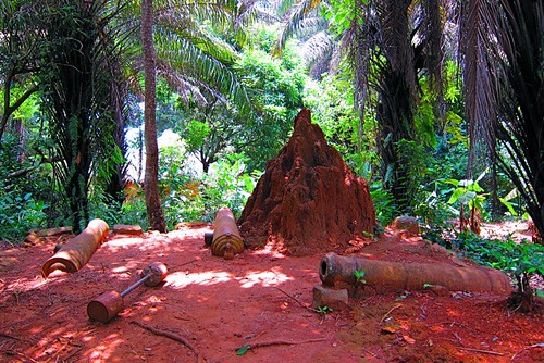 massive termite hill and canons