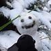 Spidey saying hello to the snow lady :). Routeburn Trek. South Island, New Zealand 17APR11