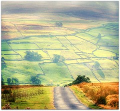 The Lie Of The Land (~ paddypix ~) Tags: light summer england heather yorkshire fields moors walls drystonewalls countryroad moorland swaledale idream lowrow