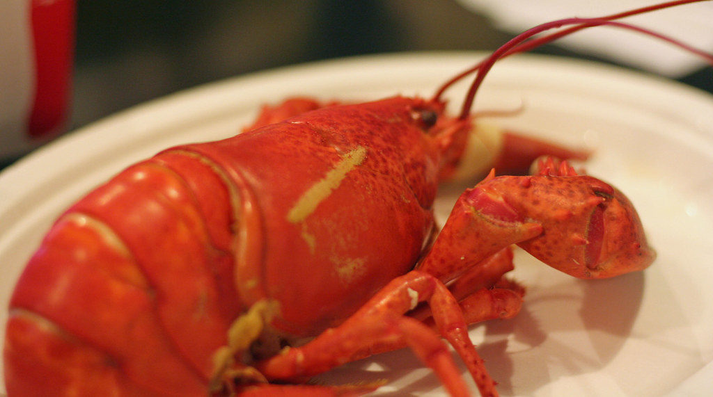 lorie's lobster