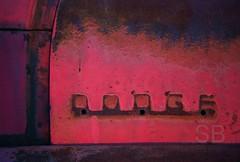 Dodge (Studiobaker) Tags: trip minnesota metal yard drive march mar junk missing rust rusty roadtrip faded chrome age rusted stuff dodge weathered fade aged junkyard salvage mn lack lacking 2011 studiobaker