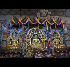 Namdroling monastery aka Golden Temple