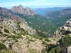 Crêtes de Marignana : en vue de la face Est du Capu d'Ortu et du vallon du ruisseau du Vittulu