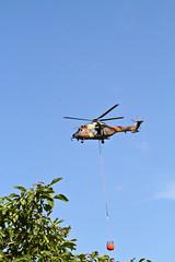 Helicoptero del Ejercito de tierra en los trabajos de extincion del incendio forestal de Ibiza (ibzsierra