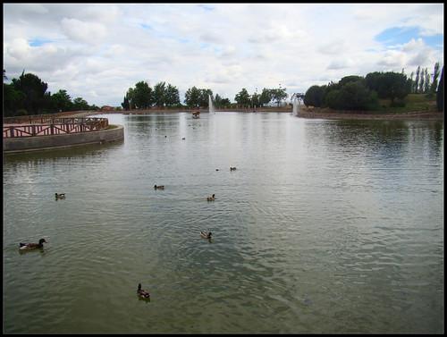 Parque del Lago (2) , Getafe
