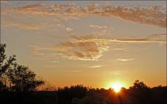 Alien Sunrise