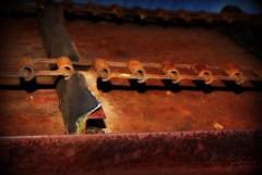 rusted (LaLa83) Tags: ohio summer amanda june rust farm sony machine rusty alpha a230 2011 fairfieldcounty