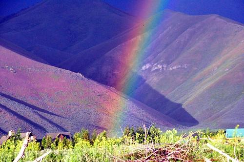 173 - Rainbow Promise by carolfoasia